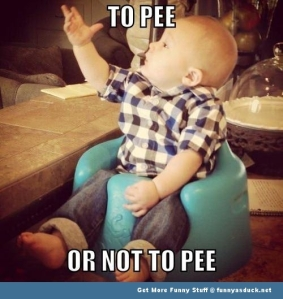 funny-baby-to-pee-or-not-meme